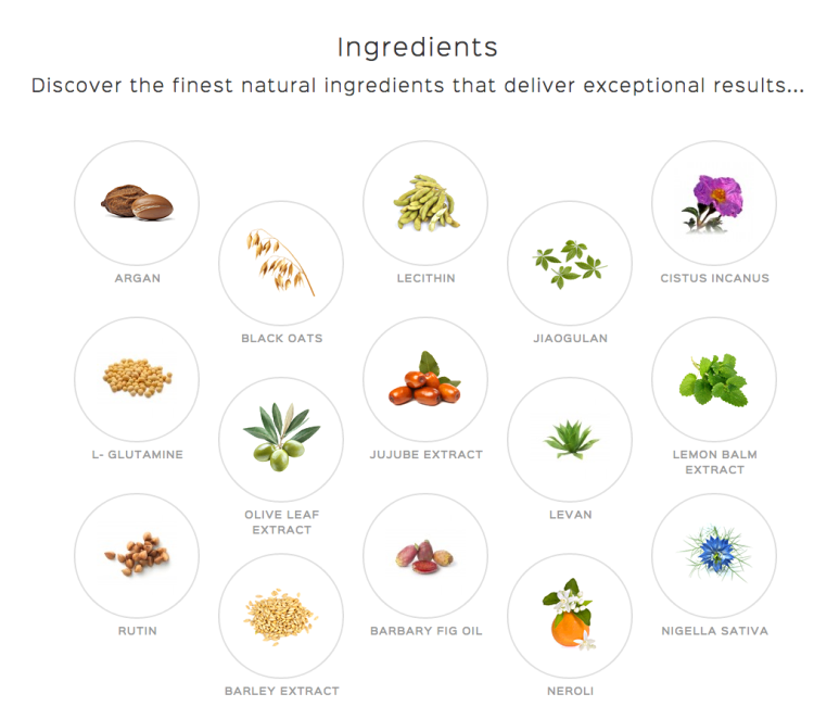 Our Ingredients