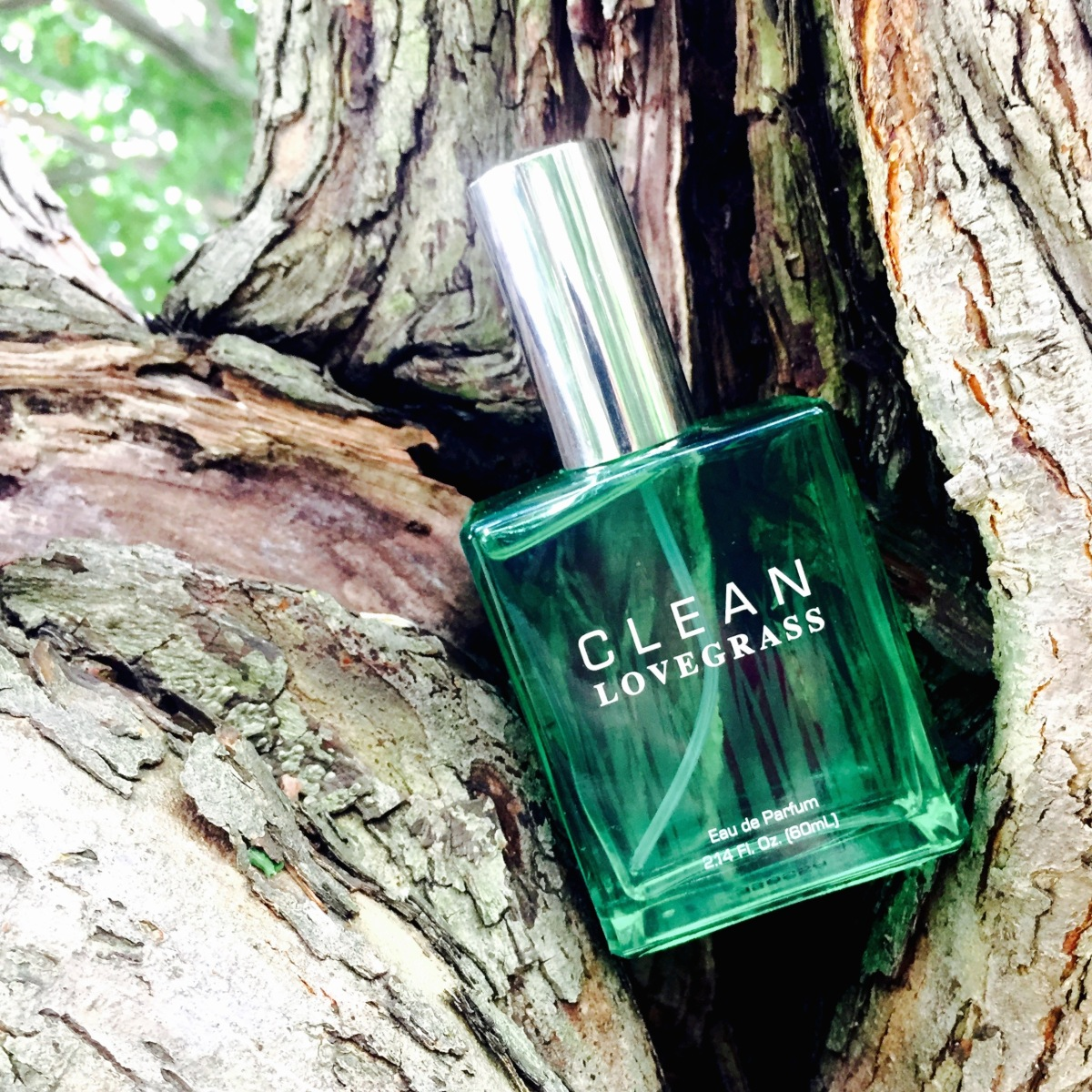 New From CLEAN - Lovegrass - Fragrance
