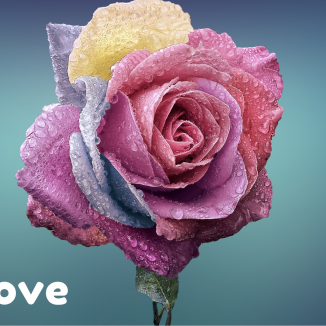 Love All love
